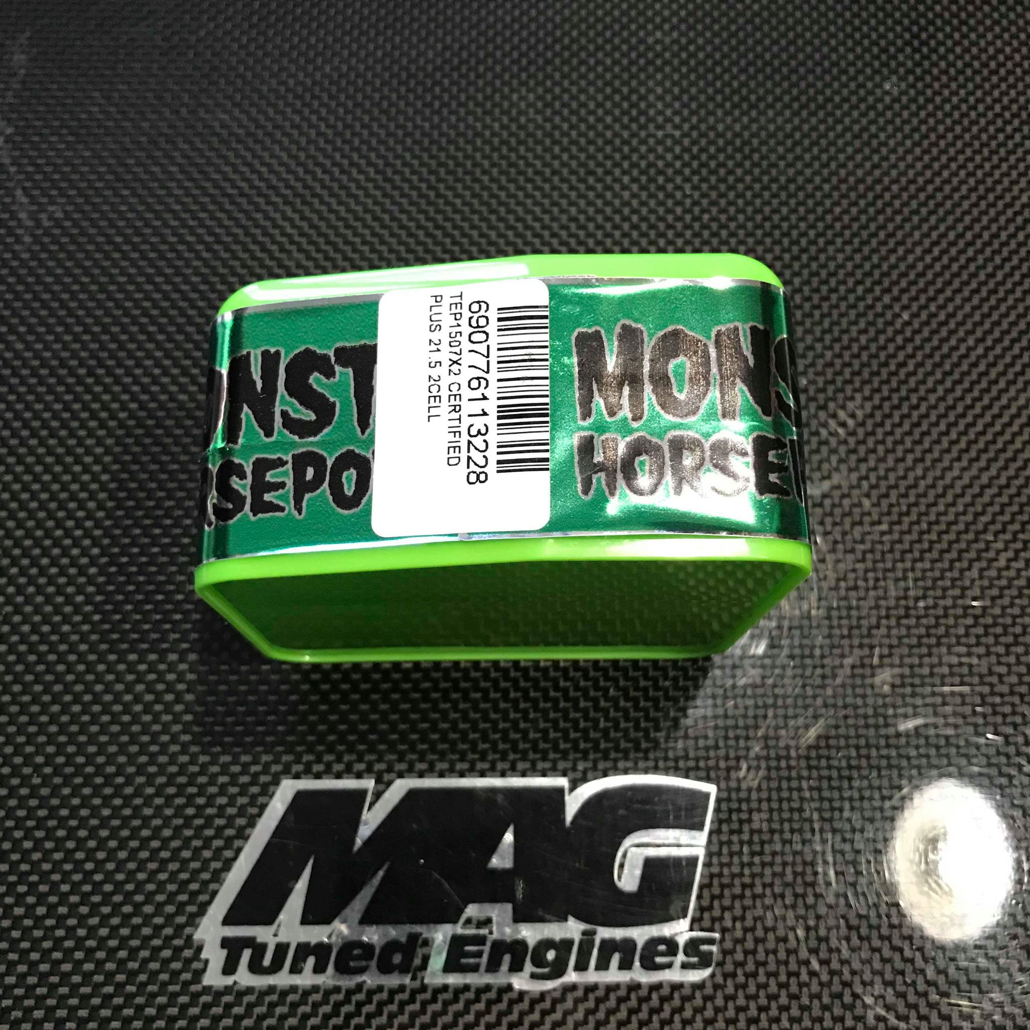 """Monster """"MAX"""" 13 5T ROAR Spec Brushless Motor (CERTIFIED TEAM SPEC"""